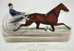 Currier & Ives print of racehorse named after Edwin Forrest. Courtesy of the Library of Congress.